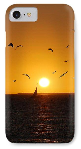 Sunset Birds Key West IPhone Case