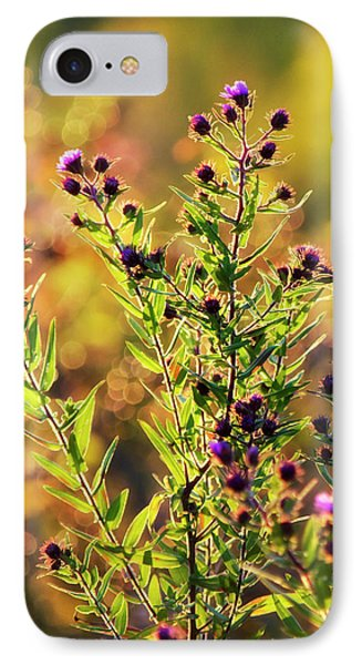 IPhone Case featuring the photograph Sunset Flowers by Christina Rollo