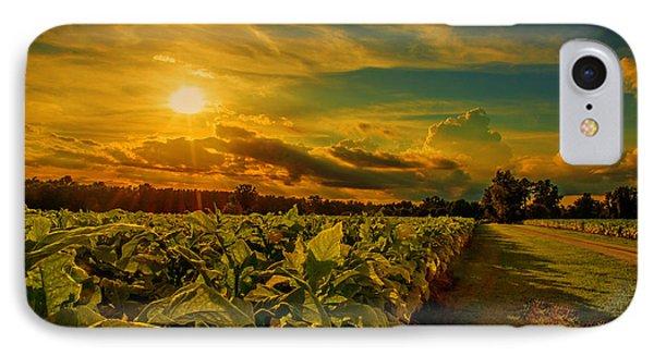 Sunset In A North Carolina Tobacco Field  IPhone Case by John Harding