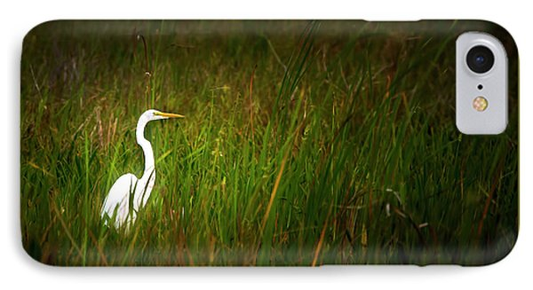 Sunset In The Sawgrass IPhone Case by Mark Andrew Thomas
