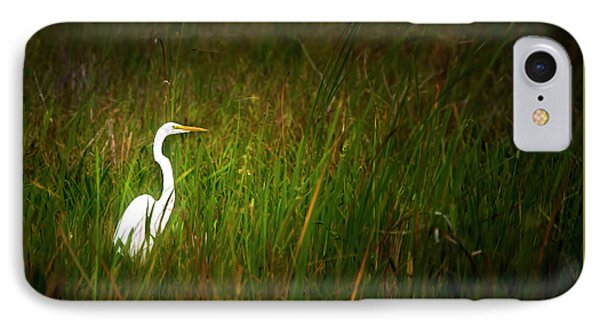 Sunset In The Sawgrass IPhone Case