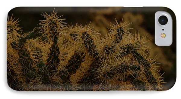Opuntia Bigelovii iPhone 7 Case - Sunset Kissed Cholla by Ruth Jolly