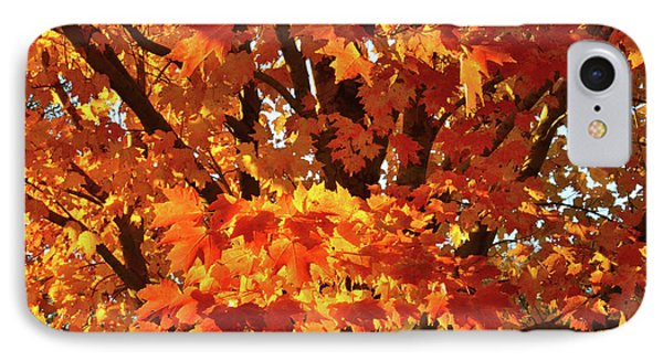 IPhone Case featuring the photograph Sunset On Sugar Maple by Ray Mathis