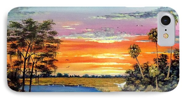 Sunset On The Glades Phone Case by Riley Geddings