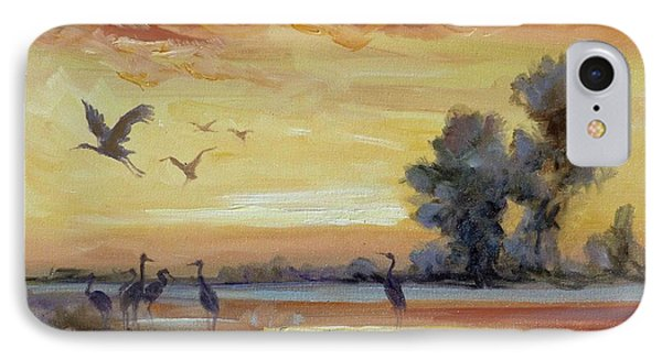 Sunset On The Marshes With Cranes IPhone Case