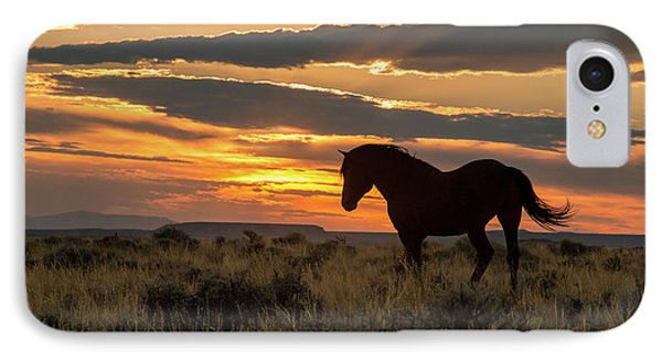 Sunset On The Mustang IPhone Case by Jack Bell