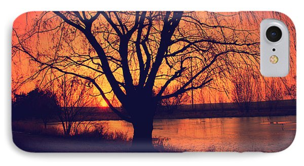 Sunset On Willow Pond IPhone Case
