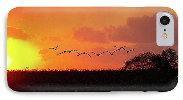 Sunset Over Easy IPhone Case by Sue Stefanowicz