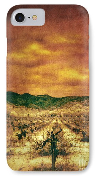 Sunset Over Vineyard IPhone Case by Jill Battaglia