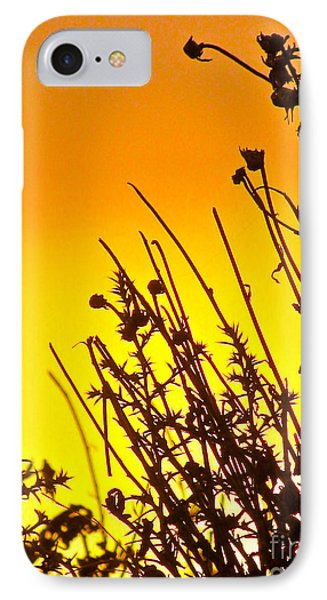 Sunset Sand-doons  Phone Case by Debra     Vatalaro