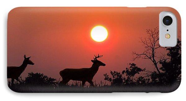 Sunset Silhouette Phone Case by David Dehner