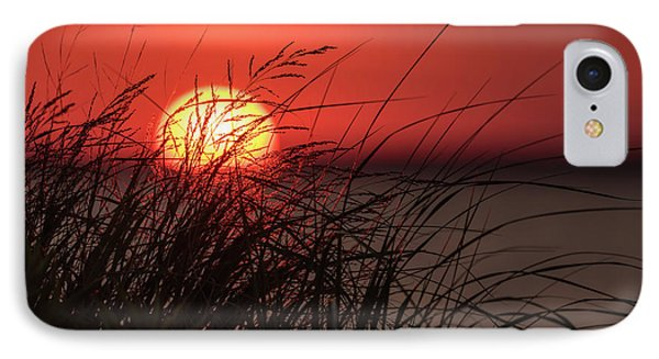 Sunset Through The Reeds Lavallette Nj IPhone Case by Terry DeLuco