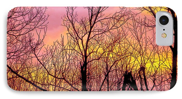 Sunset Through The Trees IPhone Case by Craig Walters