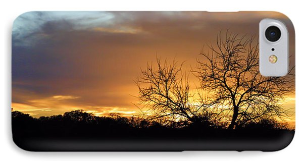 Sunset With Tree Silhouette IPhone Case