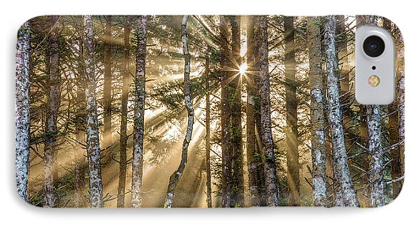 IPhone Case featuring the photograph Sunshine Forest by Pierre Leclerc Photography