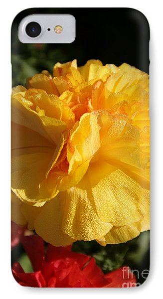 Sunshine On Sunshine IPhone Case by Andrea Jean