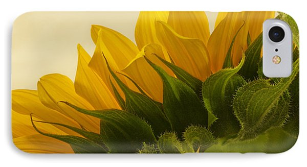 Sunshine Under The Petals IPhone Case by Sandra Foster