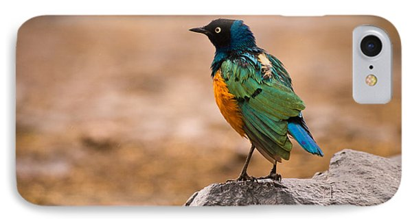 Superb Starling IPhone 7 Case by Adam Romanowicz