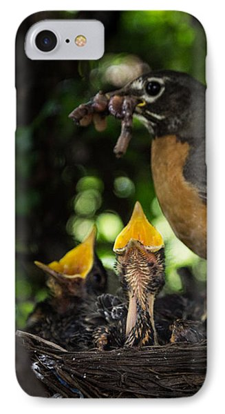 Supper Time IPhone Case by Chris Bordeleau