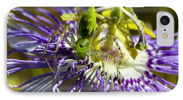Surprise Passion Green Lynx Spider IPhone Case by Reid Callaway