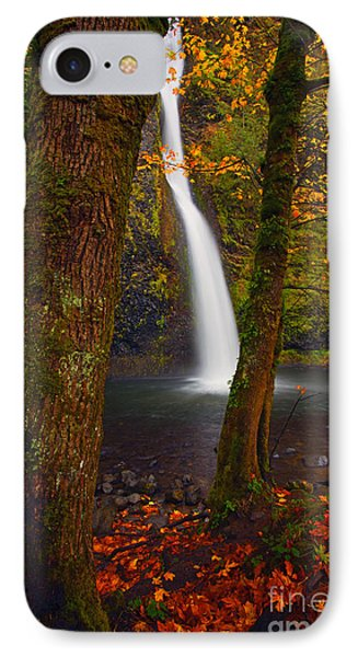 Surrounded By The Season Phone Case by Mike  Dawson