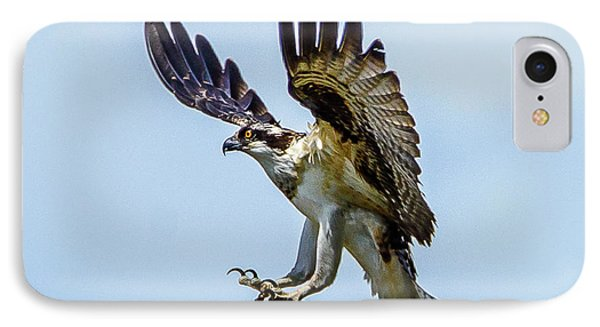 Suspended Osprey IPhone Case by Jerry Cahill