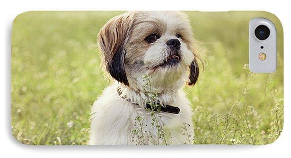 Sute Small Dog IPhone Case by Jelena Jovanovic