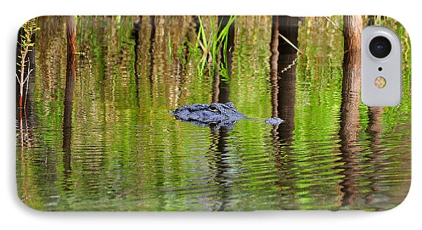 IPhone Case featuring the photograph Swamp Stalker by Al Powell Photography USA