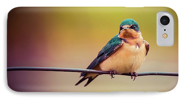 IPhone Case featuring the photograph Swallow by Mary Hone