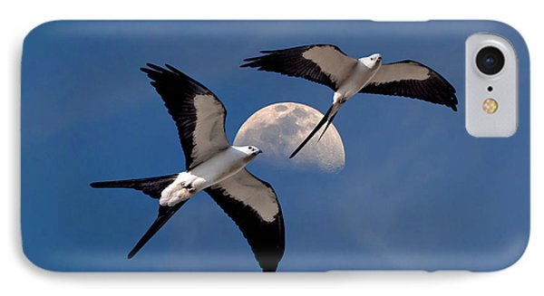 Swallow Tail Kites In Flight Under Moon IPhone Case by Justin Kelefas