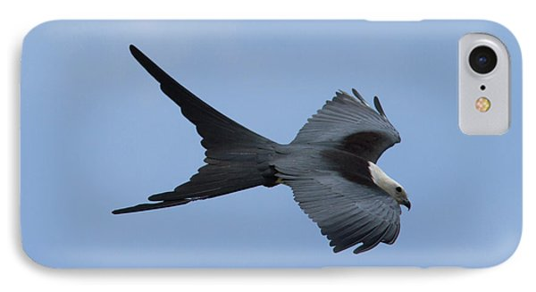 Swallow-tailed Kite #1 IPhone Case
