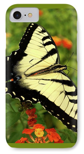 Swallowtail Among Lantana IPhone Case by Sue Melvin