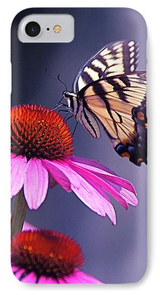 IPhone Case featuring the photograph Swallowtail And Coneflower by Byron Varvarigos