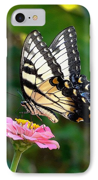 Swallowtail Butterfly 3 Phone Case by Sue Melvin