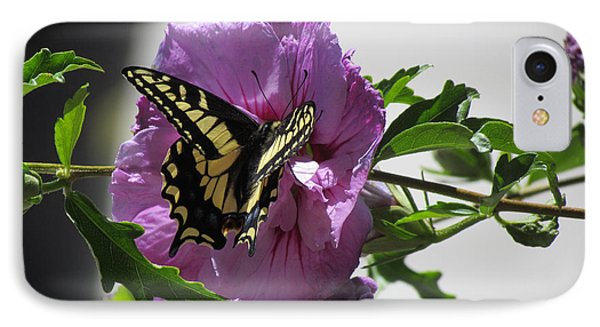 Swallowtail Butterfly IPhone Case by Bonnie Muir