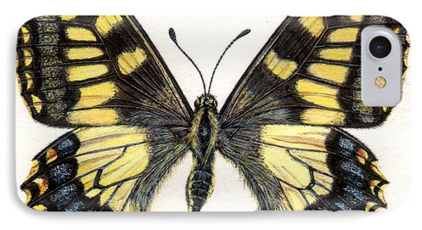 Swallowtail Butterfly IPhone Case by Rachel Pedder-Smith