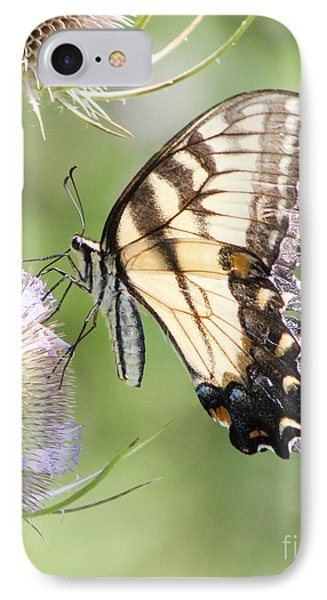 Swallowtail Delight IPhone Case by Anita Oakley