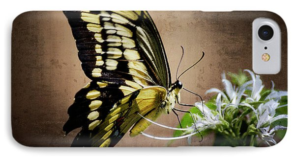 Swallowtail Phone Case by Saija  Lehtonen