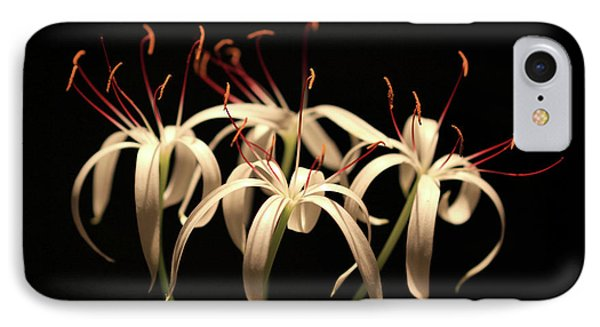 Swamp Lily IPhone Case by Meg Rousher