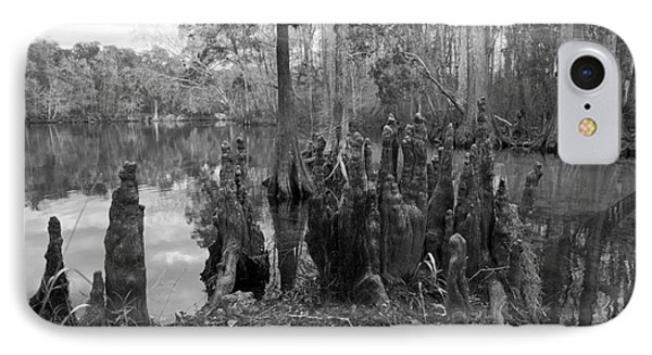 IPhone Case featuring the photograph Swamp Stump by Blake Yeager