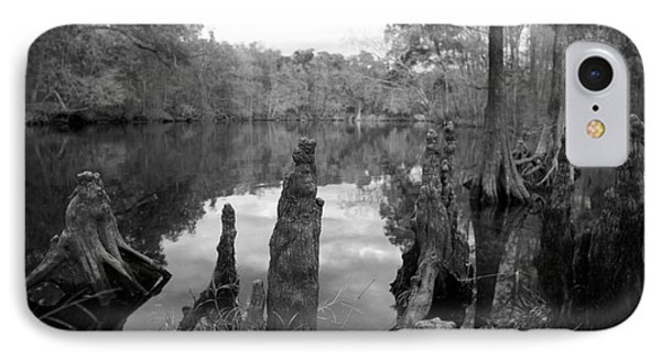 IPhone Case featuring the photograph Swamp Stump II by Blake Yeager