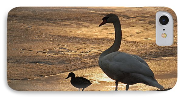 IPhone Case featuring the photograph Swan And Baby At Sunset by Richard Bryce and Family