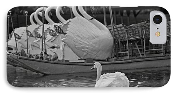 Swan Meeting Up With Some Friends Black And White IPhone Case