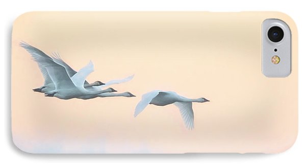 IPhone Case featuring the photograph Swan Migration  by Kelly Marquardt