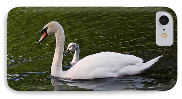 Swan Mother With Cygnet IPhone Case by Rona Black