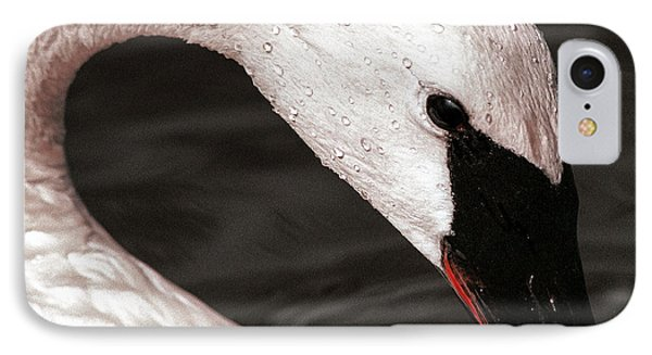 IPhone Case featuring the photograph Swan Neck by Jean Noren