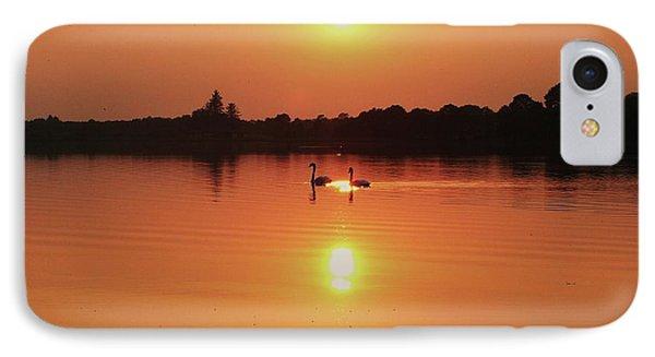 Swans At Sunset  IPhone Case by Martina Fagan