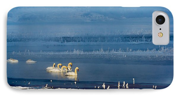 Swans On The Lake IPhone Case by TL Mair