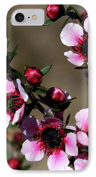 Sweet Cherry IPhone Case by Baggieoldboy