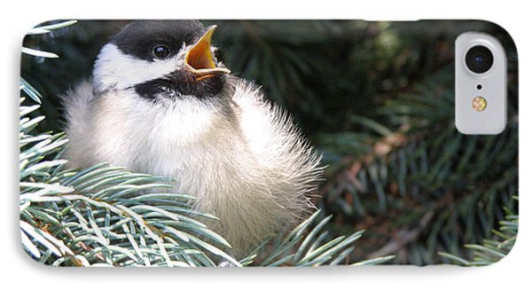 Sweet Chickadee IPhone Case by Angie Rea